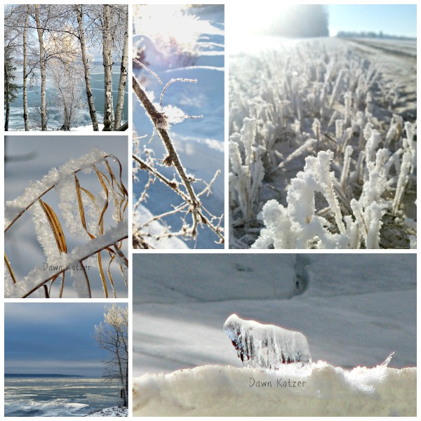 Ice Crystals and Jack Frost photos by Dawn Kotzer