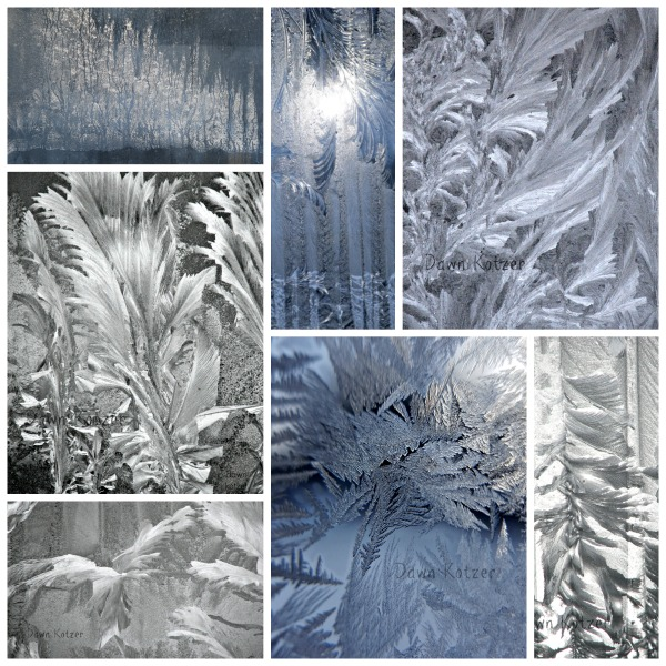Jack Frost Magic by Dawn Kotzer