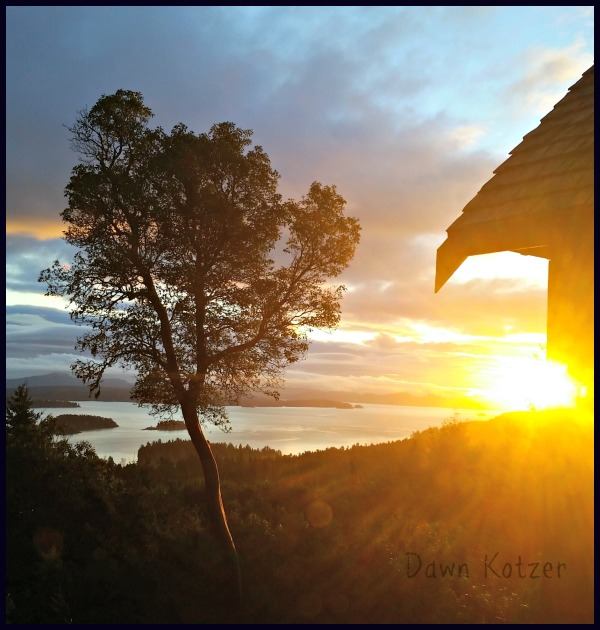 Sun rising on gulf island morning- photo by Dawn Kotzer
