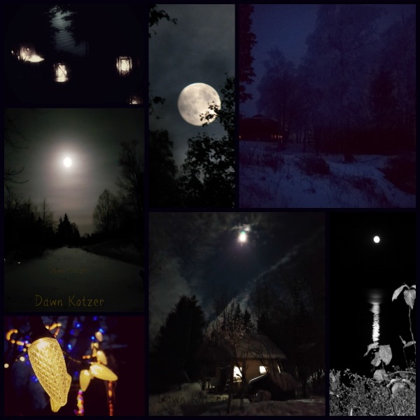 Midnite Blue night scenes in winter wilderness- photos by Dawn Kotzer