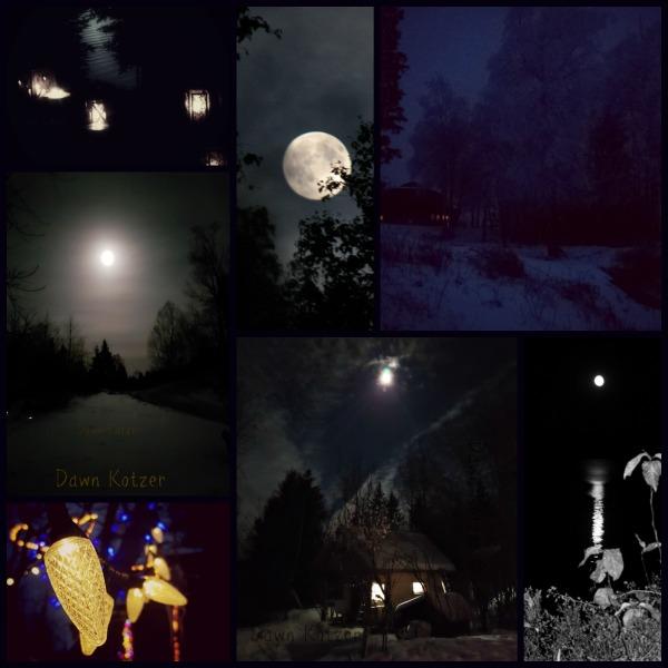 Midnite Blue night scenes in winter wilderness- photos by Dawn Kotzer