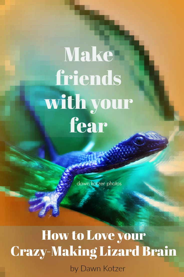How to love your Lizard Brain and ease fear
