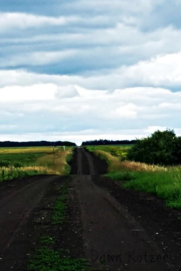 the road feels like velvet