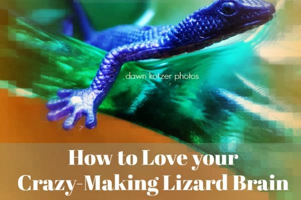 Fear -the Crazy Making Lizard Brain