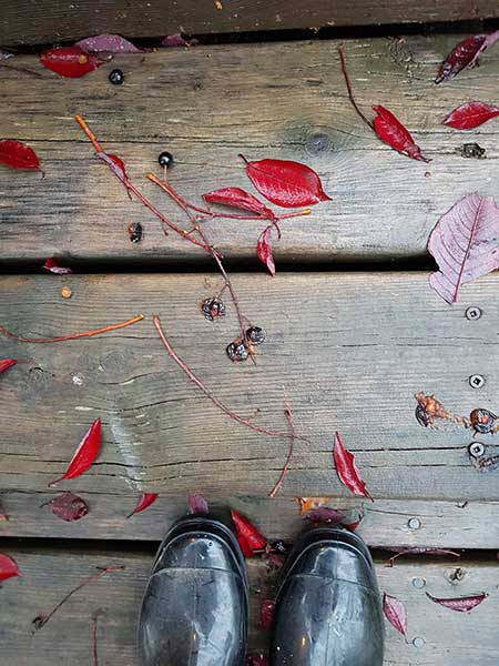 black rubber boots on cedar deck strewn with red autum leaves
